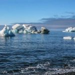 Harvard scientist says we are five years old to save ourselves from climate change